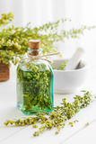 Bottiglia di assente o tintura di dragoncello e delle erbe curative immagine stock
