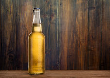 Bottiglia di birra bagnata fredda Fotografie Stock