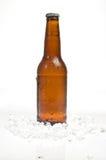 Bottiglia di birra che si leva in piedi in ghiaccio immagini stock libere da diritti