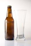 Bottiglia di birra e di vetro Immagine Stock