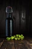 Bottiglia di birra e luppolo Fotografia Stock Libera da Diritti