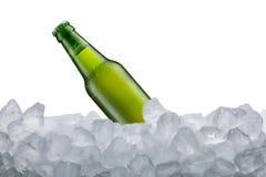 Bottiglia di birra fredda Fotografie Stock Libere da Diritti
