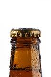 Bottiglia di birra fredda Fotografia Stock Libera da Diritti