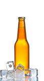 Bottiglia di birra fresca con ghiaccio, birra su estate Fotografie Stock