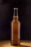 Bottiglia di birra marrone fredda sul nero Fotografia Stock Libera da Diritti
