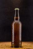Bottiglia di birra marrone fredda sul nero Fotografia Stock