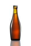 Bottiglia di birra o di sidro isolato su fondo bianco Immagini Stock