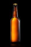 Bottiglia di birra o di sidro isolato su fondo nero Fotografia Stock