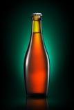 Bottiglia di birra o di sidro isolato su fondo verde Fotografia Stock Libera da Diritti