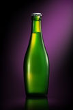 Bottiglia di birra o di sidro su fondo viola Immagine Stock Libera da Diritti