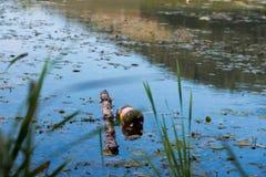 Inquinamento della spiaggia di varna dopo l 39 inondazione for Piccolo stagno