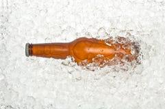 Bottiglia di birra su ghiaccio fotografie stock libere da diritti