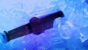 Bottiglia di birra su ghiaccio in club stock footage