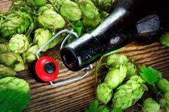 Bottiglia di birra vuota e luppolo Fotografia Stock Libera da Diritti