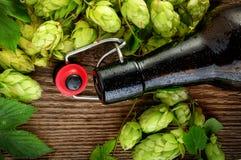 Bottiglia di birra vuota e vista superiore di luppolo Fotografia Stock