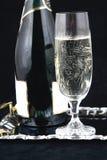 Bottiglia di Champagne e vetro VIII Fotografia Stock