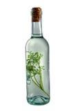 Bottiglia di Grappa Fotografie Stock Libere da Diritti