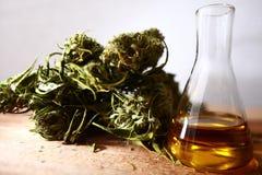 Bottiglia di olio di CBD e cannabis dei prodotti della canapa fotografia stock libera da diritti