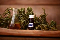 Bottiglia di olio di CBD e cannabis dei prodotti della canapa immagini stock