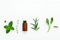 Bottiglia di olio essenziale con salvia di erbe fresca, rosmarino, timo Immagine Stock Libera da Diritti