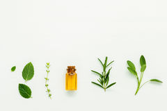Bottiglia di olio essenziale con salvia di erbe fresca, rosmarino, timo Fotografia Stock Libera da Diritti