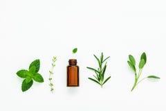 Bottiglia di olio essenziale con salvia di erbe fresca, rosmarino, timo Immagini Stock Libere da Diritti