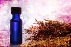 Bottiglia di olio essenziale di Aromatherapy dell'estratto della lavanda Fotografia Stock