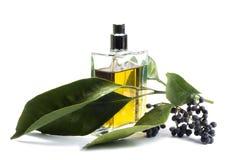 Bottiglia di profumo, accessorio personale, franco aromatico Fotografia Stock