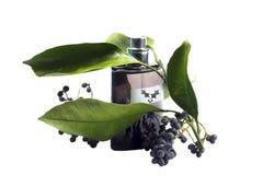 Bottiglia di profumo, accessorio personale, odore fragrante aromatico Fotografia Stock Libera da Diritti