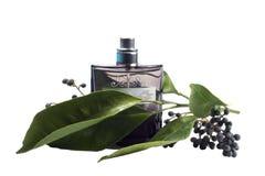 Bottiglia di profumo, accessorio personale, odore fragrante aromatico Immagine Stock