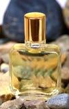 Bottiglia di profumo rocciosa fotografia stock libera da diritti