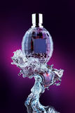 Bottiglia di profumo sulla spruzzata dell'acqua fotografia stock libera da diritti