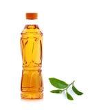 Bottiglia di tè verde con la foglia di tè isolata su fondo bianco Fotografia Stock Libera da Diritti