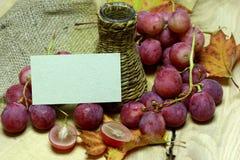 Bottiglia di vimini casalinga ed uva del jucie rosso Immagine Stock