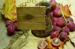 Bottiglia di vimini ed uva del vino rosso con l'etichetta Fotografie Stock Libere da Diritti