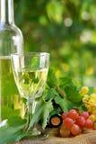 Bottiglia di vino. immagini stock