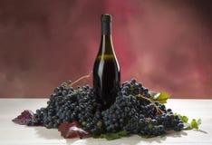 Bottiglia Di vino bedriegt uva Stock Afbeeldingen