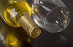 Bottiglia di vino bianco asciutto Immagini Stock