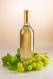 Bottiglia di vino bianco con l'uva e le foglie di vite Fotografia Stock Libera da Diritti