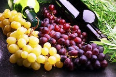 Bottiglia di vino bianco, dell'uva e dei sugheri Fotografia Stock Libera da Diritti