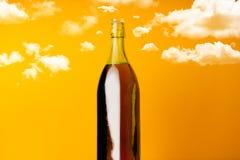 Bottiglia di vino con le nuvole intorno Fotografia Stock Libera da Diritti