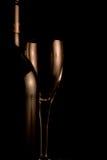 Bottiglia di vino con vetro Immagine Stock Libera da Diritti