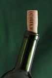 Bottiglia di vino dal Cile Fotografia Stock