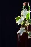 Bottiglia di vino di vetro verde con l'edera Immagine Stock