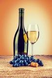 Bottiglia di vino e del bicchiere di vino con il ramo dell'uva sul inst della tela da imballaggio Immagini Stock