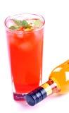 Bottiglia di vino e del cocktail Immagine Stock Libera da Diritti