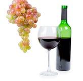 Bottiglia di vino rosso con il mazzo di uva Fotografie Stock Libere da Diritti