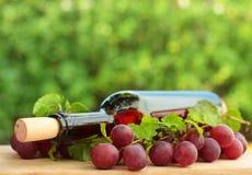Bottiglia di vino, uva rossa Immagini Stock Libere da Diritti