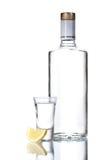 Bottiglia di vodka e del bicchiere di vino con il limone Immagini Stock