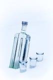 Bottiglia di vodka nella neve Immagine Stock